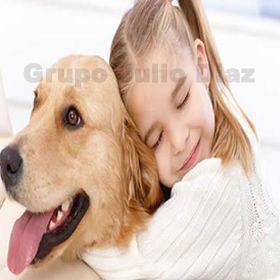 Ataud & urnas mascotas