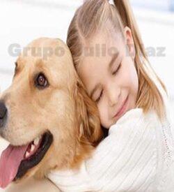 Urnas y Ataudes para mascotas
